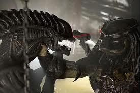 alien vs. predator3
