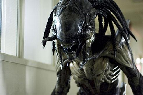 alien vs predator 22