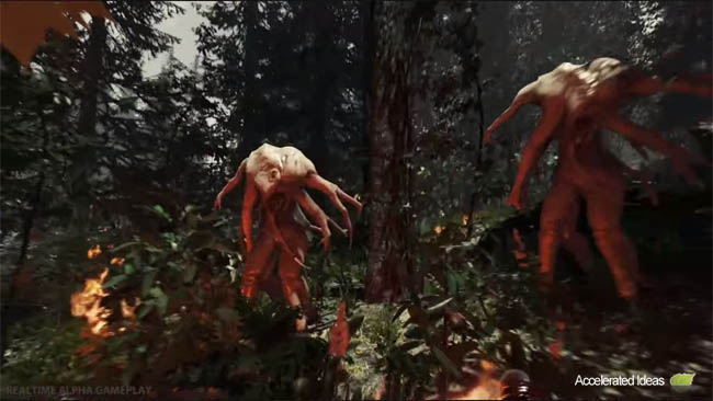 The Forest4