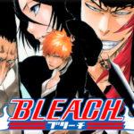 Anime challange kezdő szint: Bleach – Eperke Kalandjai