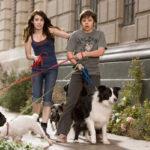 Kutyaszálló (2009)