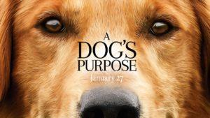 Négy láb, egy cél – Egy kutya négy élete (2017)