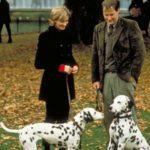 101 kiskutya (1996) – Pettyek! Pettyek mindenhol!