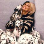 102 kiskutya (2000) – Avagy kutyából nem lesz bunda!